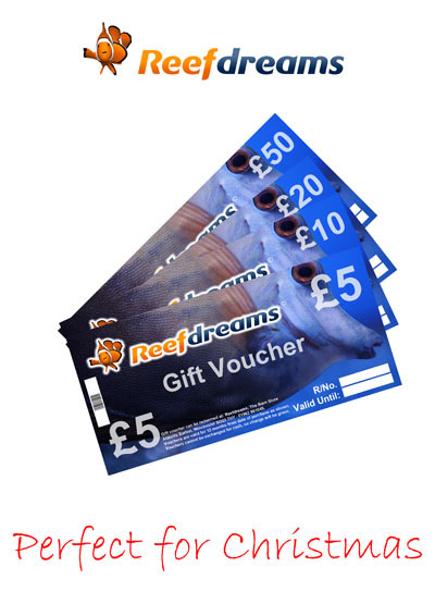 Gift Voucher for use online or in person